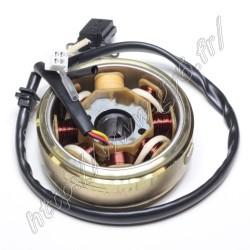Rotor / stator 8 poles 125cc