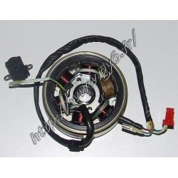 rotor / stator 6 poles 125cc